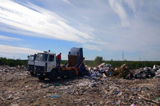 Ноябряне вывезли из леса десять кубометров строительного мусора