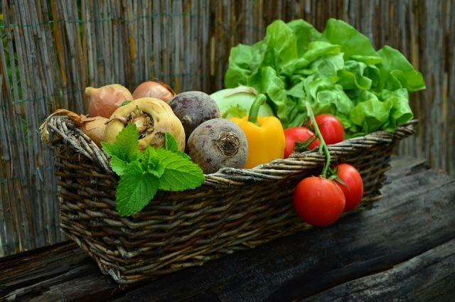 Тюменские садоводы покажут урожай на выставке - ярмарке «Дачное подворье»