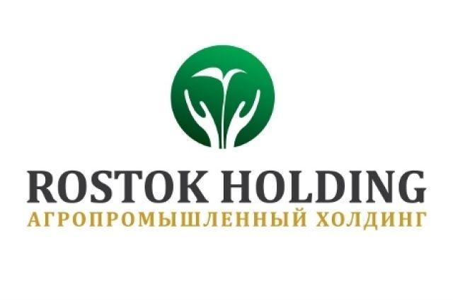 Против акционеров компании «Росток-холдинг» подали международный иск