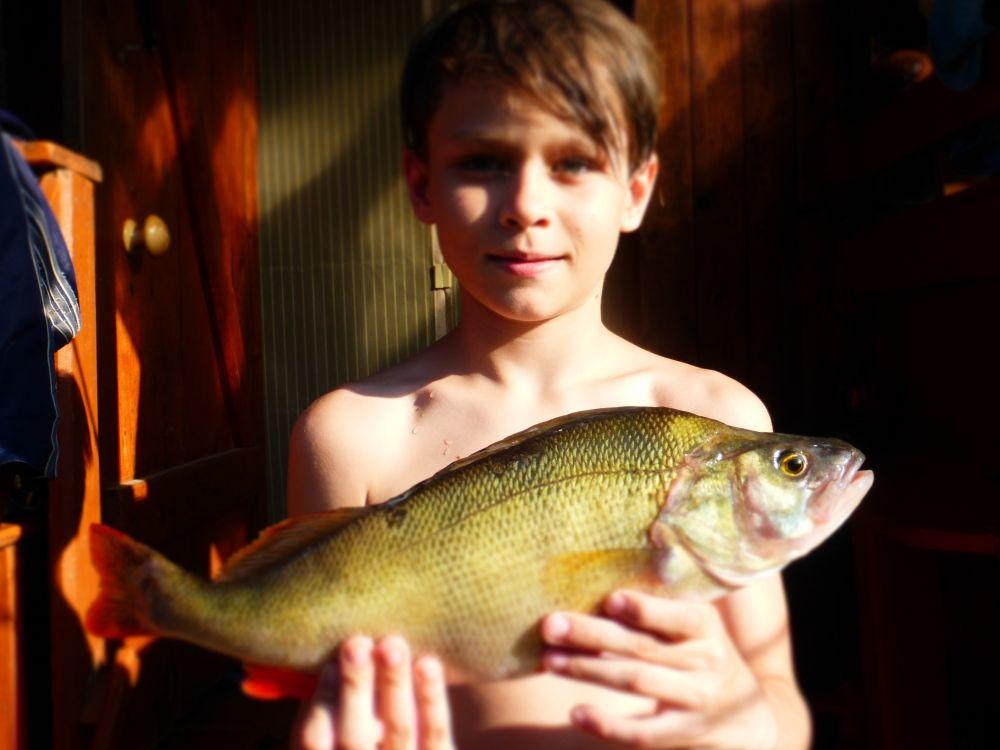 15. Чепкасов Роман (11 лет). Рыбу поймал на реке Чусовая в районе д. Ромахино в августе 2018 года. Рыба называется окунь. Вес ровно 1 кг.