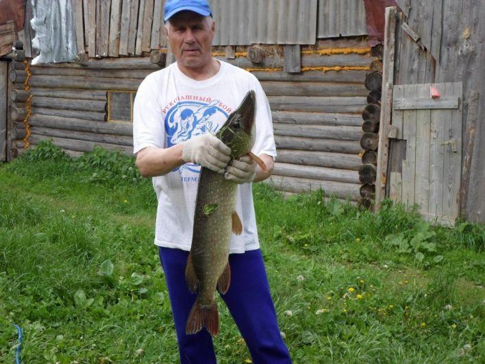 12. Сергей Леушканов. Рыба поймана мной в пруду села Шулынды Сивинского района в начале июня 2018 года. Вес щуки 4 кг. 800 грамм.