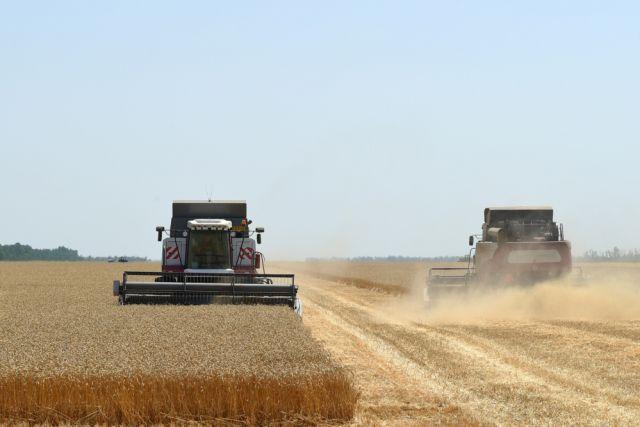 Если нынешние темпы уборочной сохранятся, то убрать все поля в НСО смогут лишь к 1 ноября.