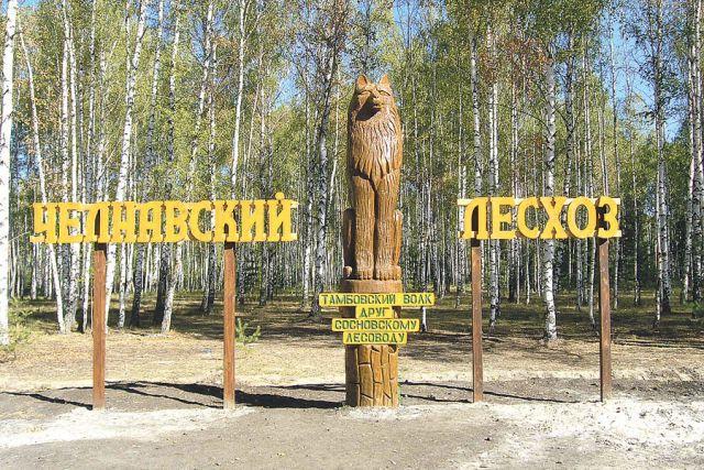 Челнавский лесхоз - главная «визитная карточка» Сосновского района.