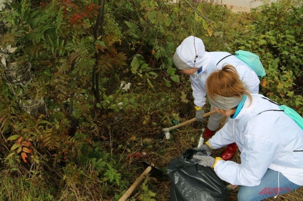Волонтеры признаются, что прибрежная зона стала значительно чище.