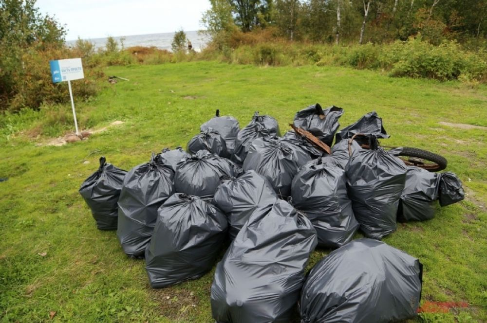 Среди мусора много металлолома - гвозди для крепления шпал, цепь, металлические тросы.