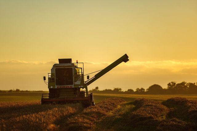 Тюменские аграрии торопятся убрать урожай пока стоит хорошая погода.