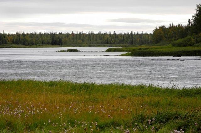 Ямальцы поделятся опытом экологических акций на международной конференции
