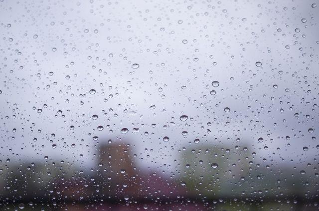 Синоптики предупреждают тюменцев о сильном ветре