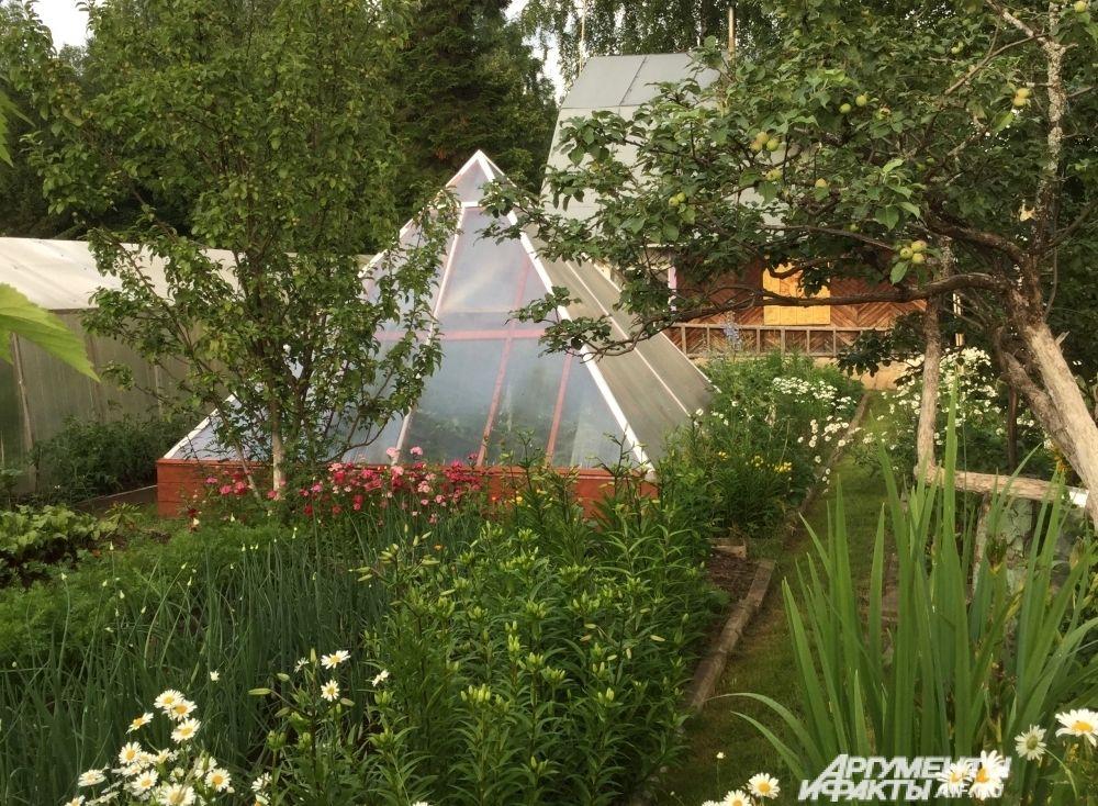 Но не только деревянными скульптурами славится дачный умелец. На его огороде возвышаются две величественные пирамиды: Хеопса и Общения.