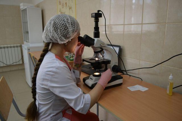 У студентов ветеринарного института есть возможность заниматься наукой.