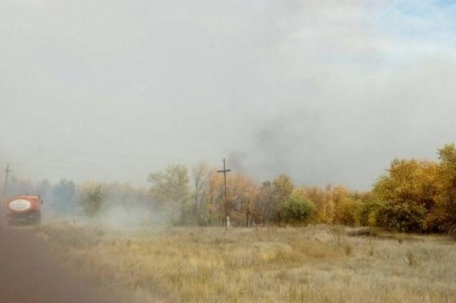 Под Оренбургом горит 6 га степного массива.