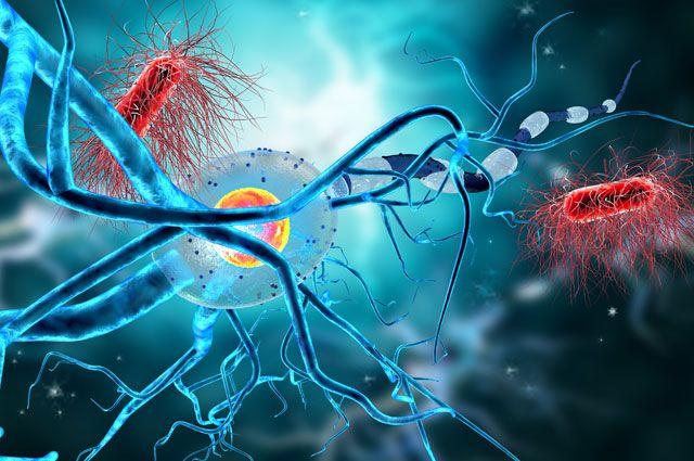 Эпилепсией может заболеть каждый? Правда и мифы об этой болезни
