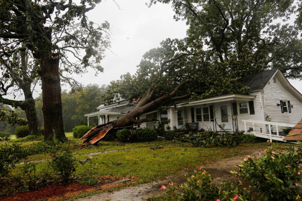 Упавшее на дом дерево в городе Уилсон, Северная Каролина.