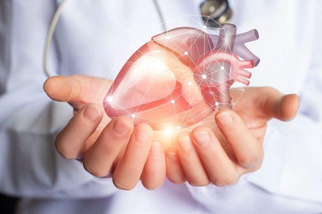 Сюрпризы кардиологии. Жир сосудам не вреден, а кислоты омега-3 – бесполезны