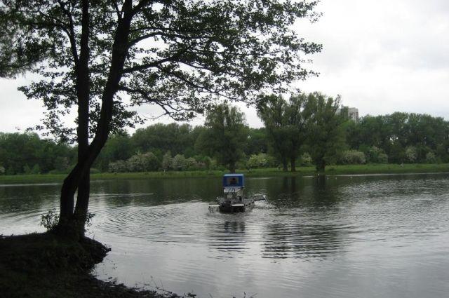 Благоустройство Летнего озера должны завершить до 1 декабря.