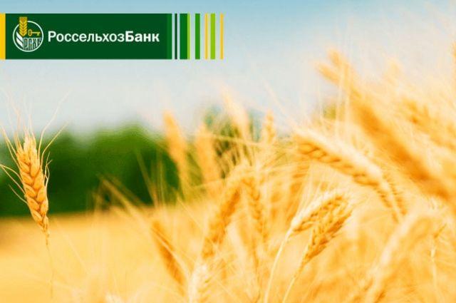 Россельхозбанк увеличил объемы льготного кредитования АПК.