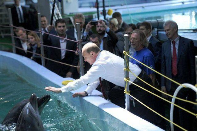 Владимир Путин в президентстком океанариуме на Русском острове.