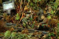 Фрагмент диорамы «Брянский лес» показывает, как важна каждая деталь для целой картины.
