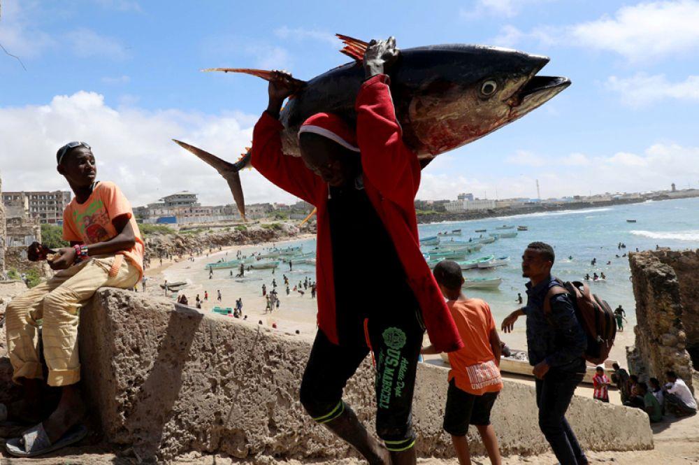 Рыбаки в порту Могадишо, Сомали.