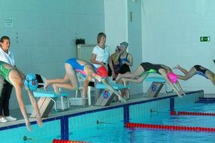 Соревнования начались в спорткомлексе «Кировец».