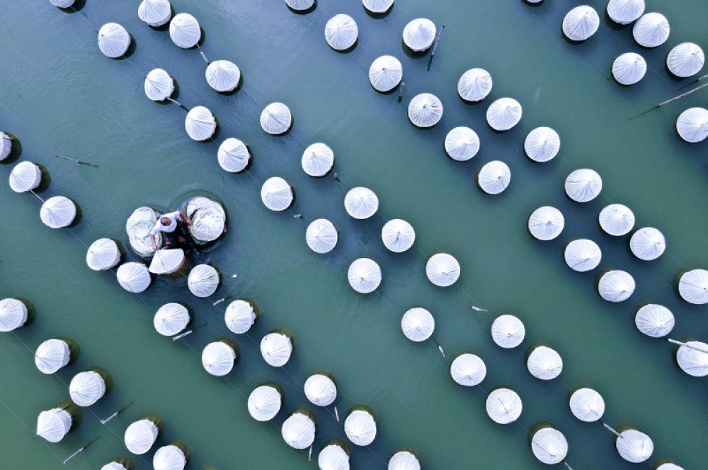 Рабочий собирает сети на рыбоводческой компании в Сюйчжоу, Китай.