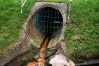 В Ишиме суд обязал племзавод прекратить загрязнять озеро