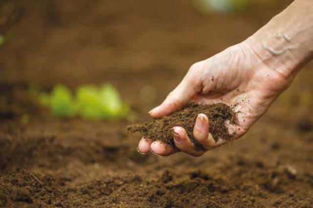 Порошенко: Земельное вето нарушает конституционные права украинцев