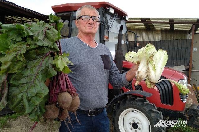 Валерий Тиссен: «Если посредники будут предлагать низкие цены, скормим овощи животным».