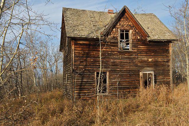 Грибок в желобок. Что делать, если деревянный дом начинает гнить?