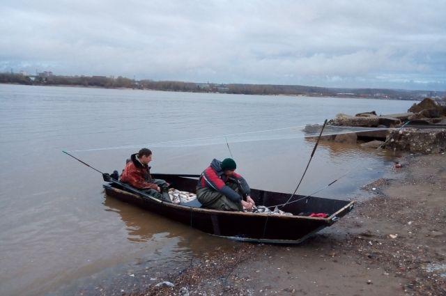 Правила, которые должны были положить конец хищническому лову, сработали против порядочных рыбаков.
