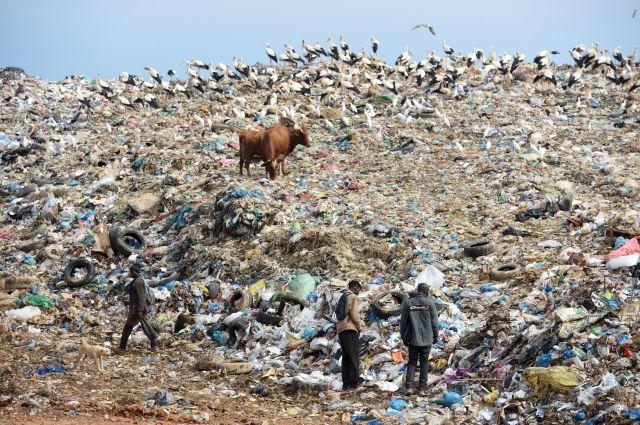 Объем мусора на планете вырастет на 70% к 2050 году – Всемирный банк