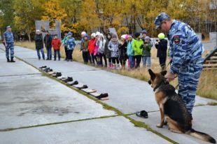 Надымские кинологи познакомили школьников со служебными собаками