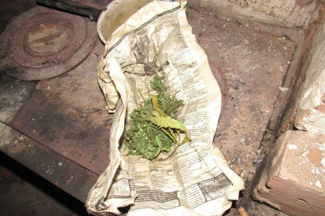 Мужчина незаконно нарвал растения на соседней улице и хранил без цели сбыта.