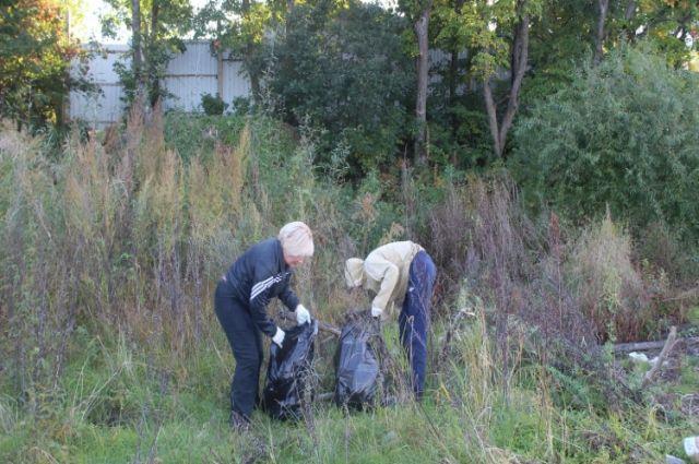 В районе села Воронежское-3 было собрано 15 мешков мусора.