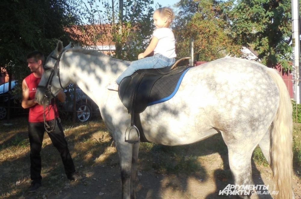 Все дети могли бесплатно покататься на лошадке.
