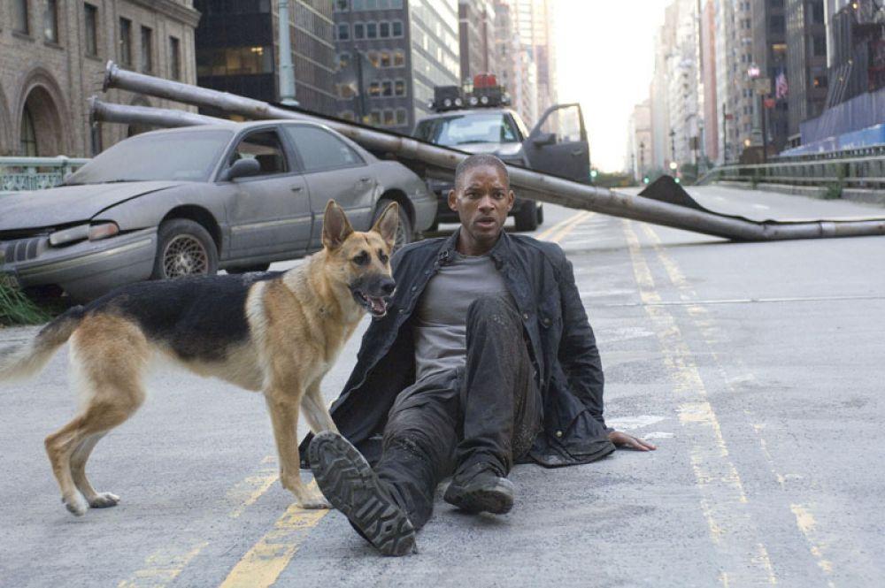 В 2007 году снялся в фильме «Я — легенда», где сыграл подполковника медицинской службы американской армии, живущего в постапокалиптическом Нью-Йорке.