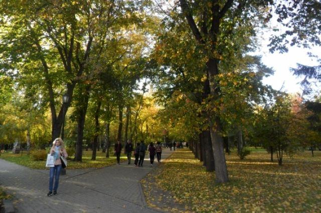 На этой неделе в городе будет красивая золотая осень.