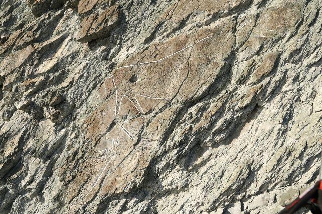 Участок с петроглифами находится в труднодоступном месте на высоте 20 м над прибрежной линией.