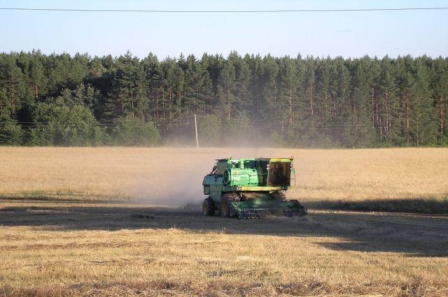 Погода осложняет уборку урожая тюменским аграриям