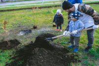 Тюменцы высадили новые деревья на аллее Отцов