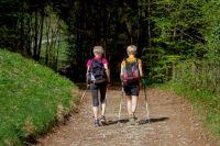 Скандинавская ходьба помогает исправить осанку.