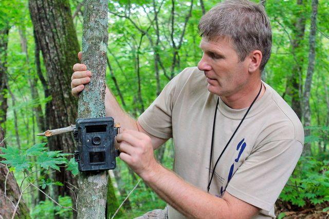 Каждая фотоловушка фиксирует историю сохранения и развития заповедной тайги.