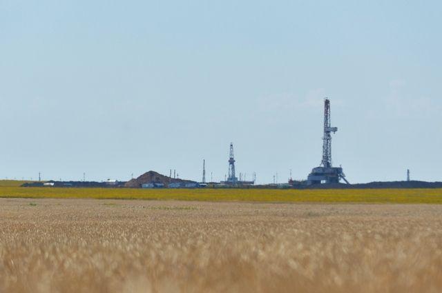 ПАО «Оренбургнефть» открыло новое  нефтяное месторождение – Мамалаевское.