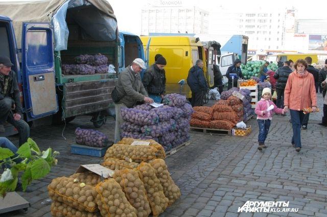 Новую сельхозярмарку в Калининграде обустраивают на месте бывшей парковки.