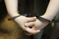 За совершённое преступление ему грозит наказание до пяти лет лишения свободы.