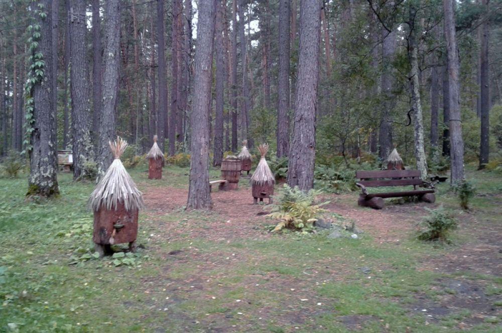Музей пчеловодства рядом с Камышлинским водопадом.