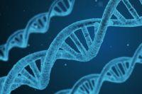 В Ишиме по ДНК нашли подозреваемого в преступлении против малолетней