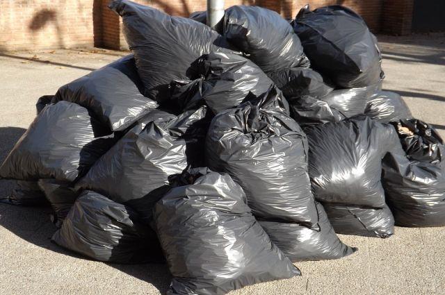 Ханымейцы собрали 12 тонн мусора и высадили сто деревьев
