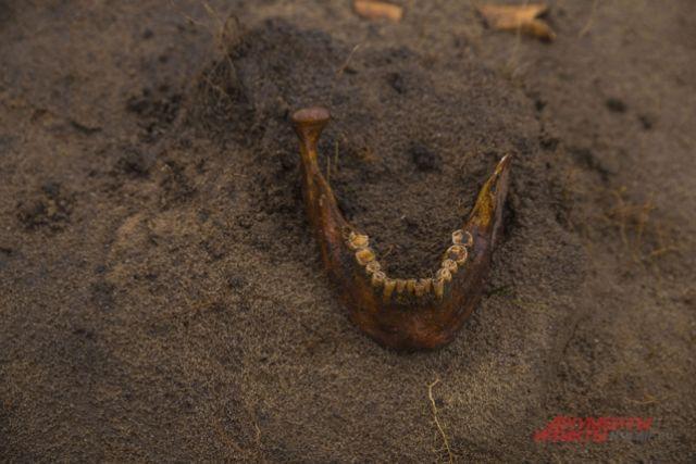 Находки археологов.