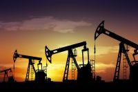 Британцы начали в Украине бурение скважины на нефтегазовом месторождении